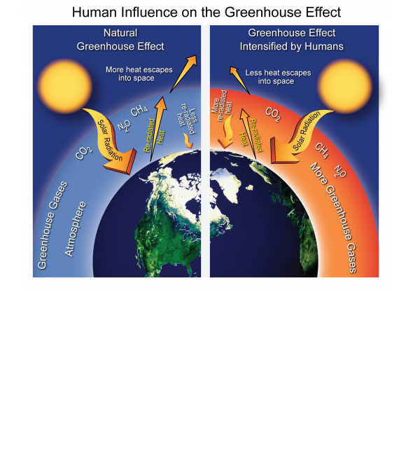 Human Influence on the Greenhouse Effect