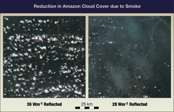 Reduction in Amazon Cloud Cover due to Smoke