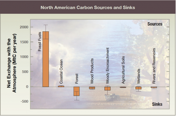 North American Carbon Sources and Sinks