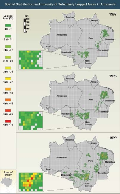 Logged Areas in the Amazon Basin
