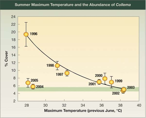 Summer Maximum Temperature and the Abundance of Collema