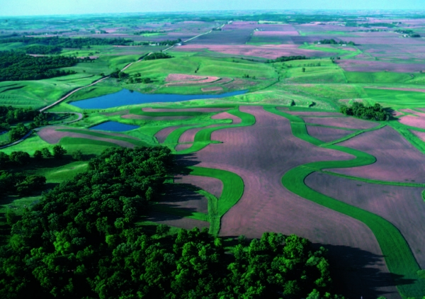 Conservation Project in Tama County, IA