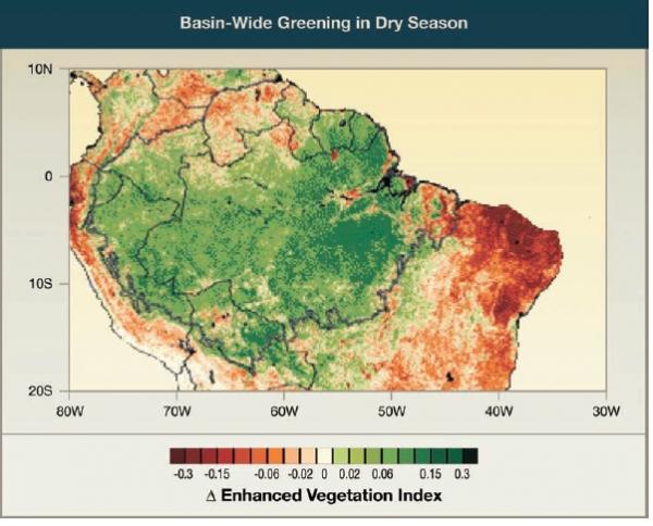 Basin-Wide Greening in Dry Season