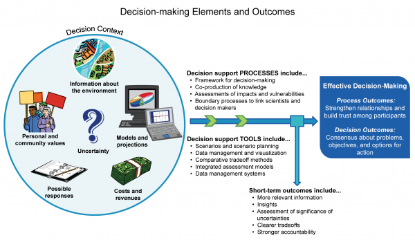 Decision-making Elements and Outcomes