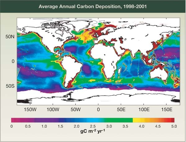 Average Annual Carbon Deposition, 1998-2001