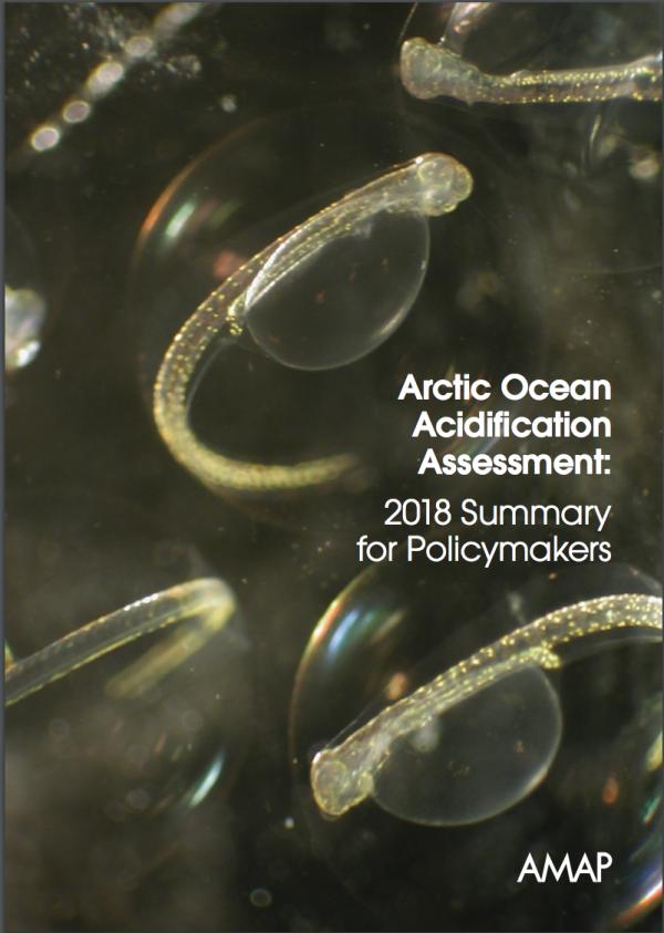 Arctic Ocean Acidification