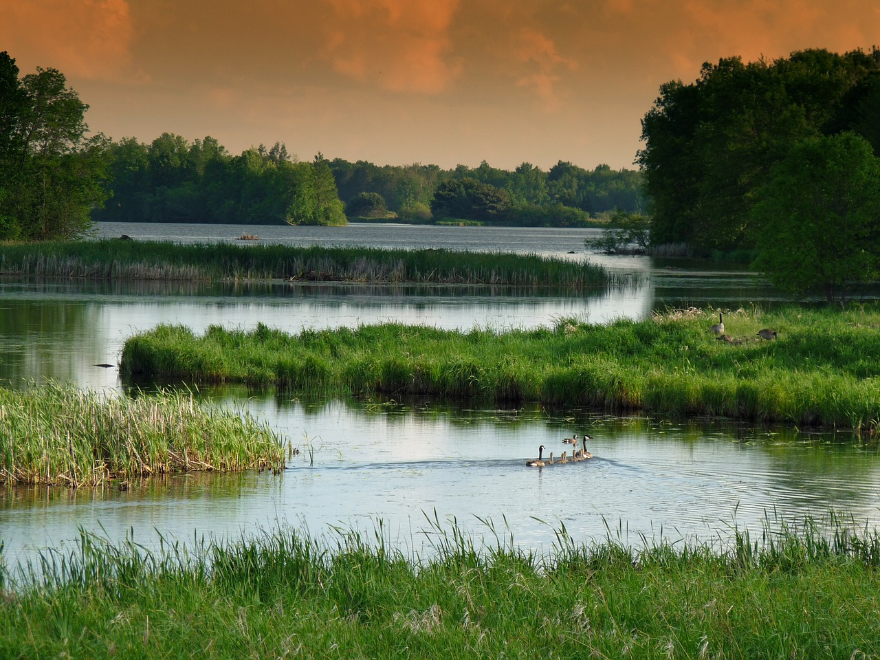 Lands and waters provide essential habitat as well as services that people rely on
